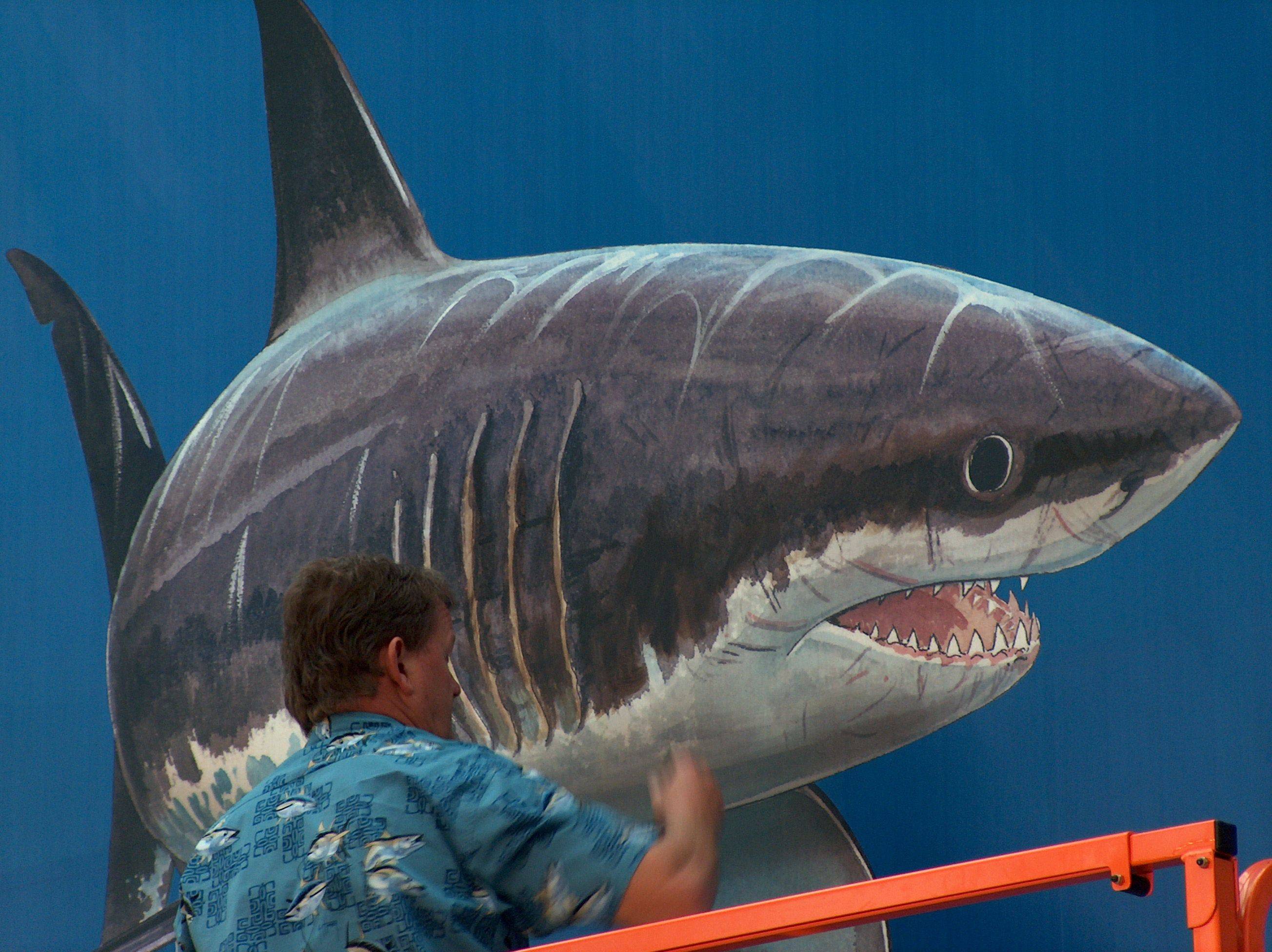 Guy Harvey Applauds Decision to Ban Commercial Shark ...  Great White Shark Painting