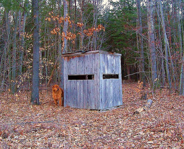 Tips For Using Ground Blinds Outdoorhub