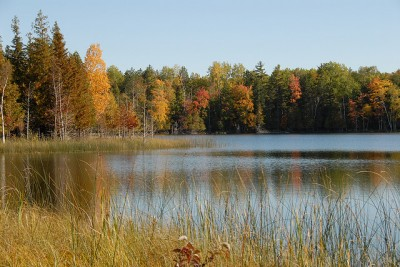 A lake in fall. Photo: Jim Sorbie