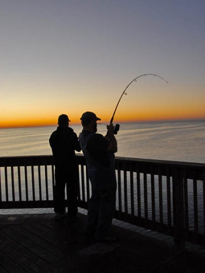 Guide for great saltwater fishing in cooler weather part for Saltwater pier fishing
