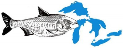 Asian Carp Invade the Great Lakes