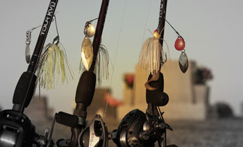 Spinnerbaits at rest