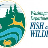 Washington Department of Fish and Wildlife