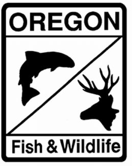 Odfw adds progess lake to trout stocking schedule outdoorhub for Odfw fish stocking