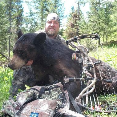 bear bait 1