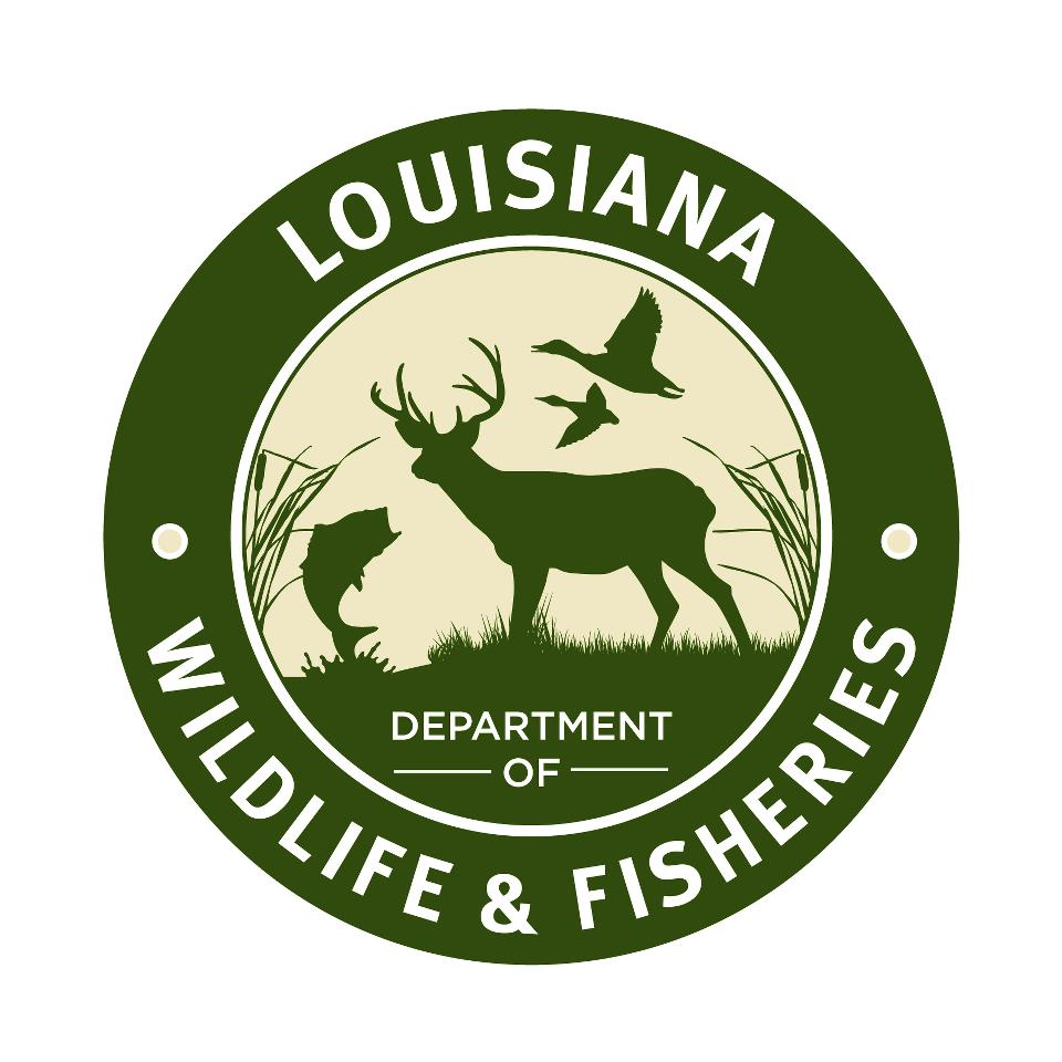 Recreational fishing and hunting licenses expire june 30 for Fishing license in louisiana