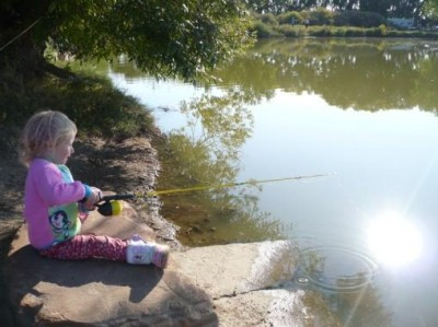 Colorado 39 s st vrain state park hosts programs on pond for Local fishing ponds