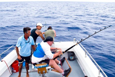 Fishing for marlin