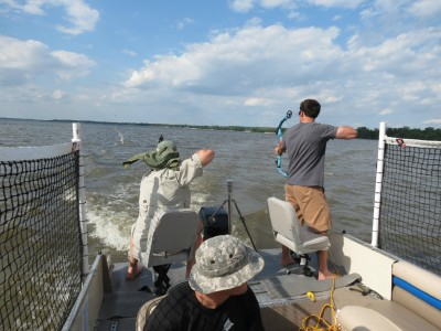 A crew of Carp Hunters takes their shot at the fish jumping out of the water on one of Capt. Nathan Wallick's guided trips.