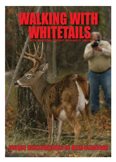 walkingwithwhitetails 2