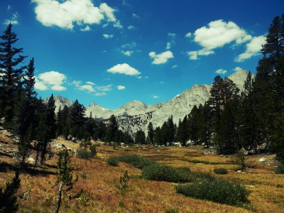 Meadow in Sequoia National Park looking west toward Milestone Mountain, near where the note was found.