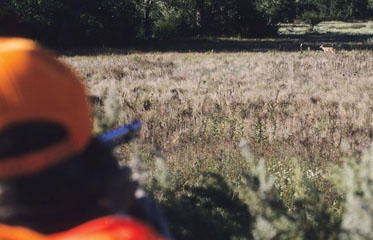 KANSAS-DEER-HUNTERS-AIM-TO-FEED-HUNGRY_frontimagecrop