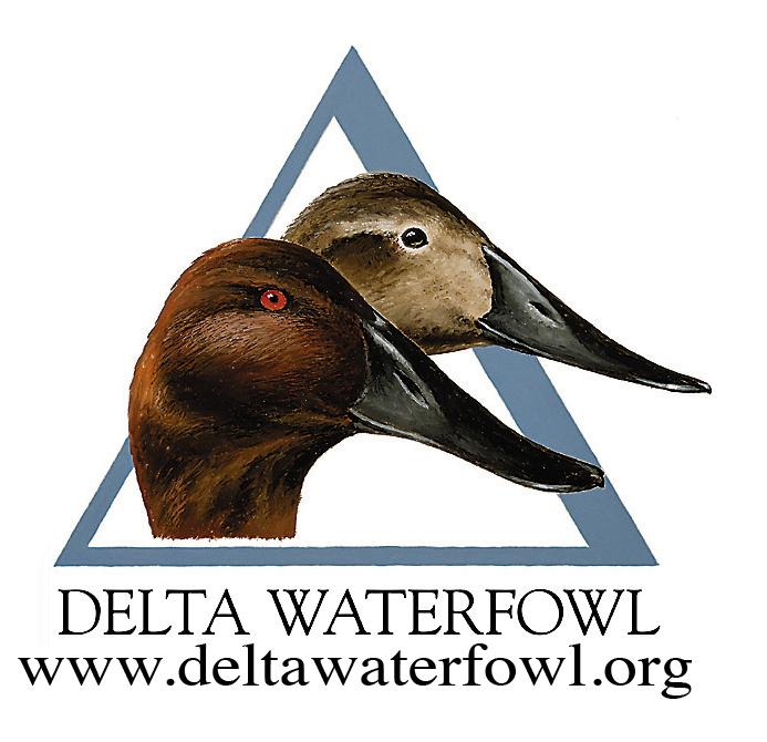 Delta Waterfowl Wallpaper Delta waterfow.