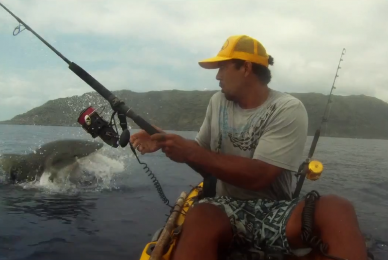 Video 5 terrifying man on shark kayak encounters outdoorhub for Kayak fishing hawaii