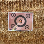 You may not always land a bull's-eye when you shoot your gun or bow, but you should always be shooting for perfection.