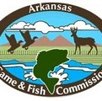 SX Arkansas GFD
