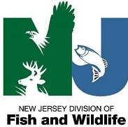 SX New Jersey Fish and Wildlife