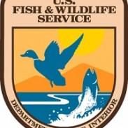 SX US Fish and Wildlife Service USFWS