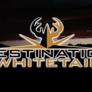 Destination Whitetail logo