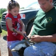 The geese were banded as part of a national effort to track the population and movement of Canadian geese in the United States.