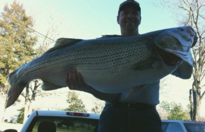 Rodney Ply with his striped bass.