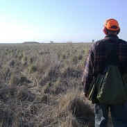 The Sportsmen's Act of 2013 could affect millions of acres of public land, and the outdoorsmen who use them.