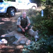 Quick-thinking and honesty has left two hunters with the story of a lifetime, and two cougars.
