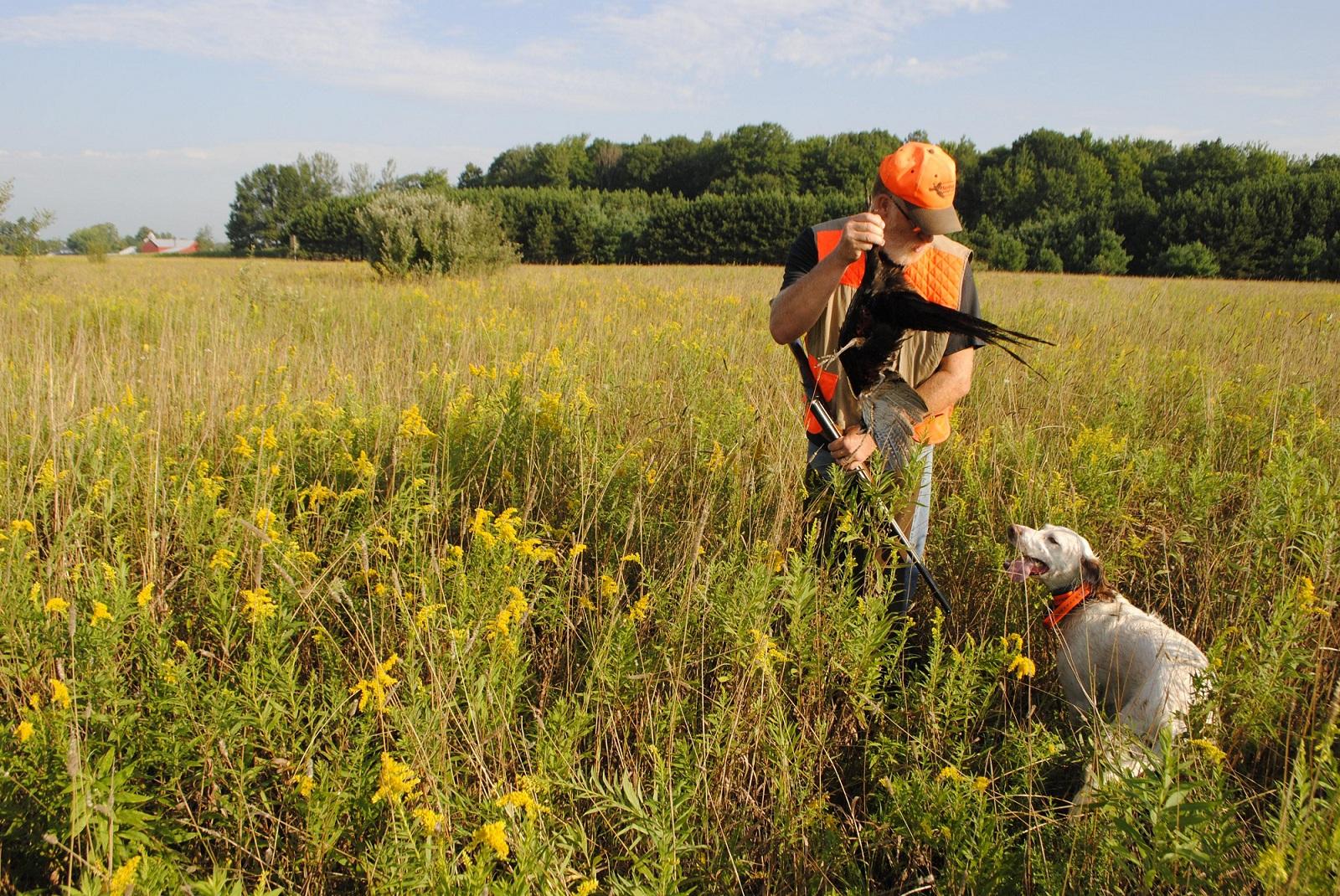 Shooting Preserves Prolong Michigan Upland Hunting Magic ...