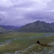The Arctic National Wildlife Refuge in northeastern Alaska is one of many refuges now closed to the public.