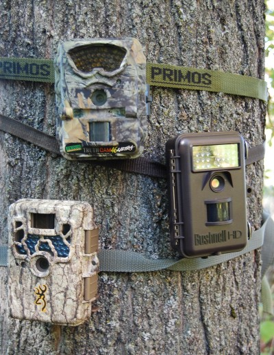 There are tons of great trail cameras available on the market today. Be sure to consider which specific features you're looking for before making a purchase.