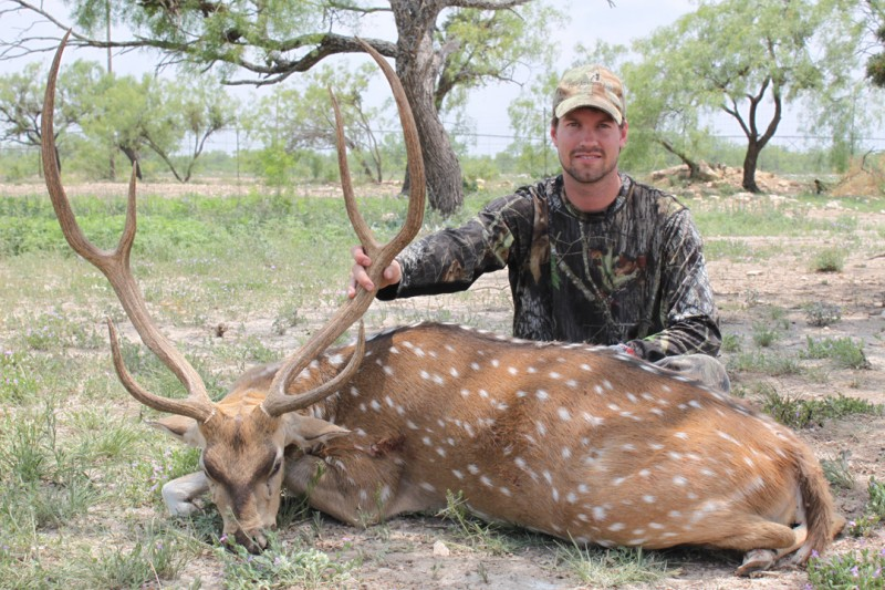The author with his axis buck taken in Texas.