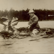 This image, allegedly showing President Theodore Roosevelt riding a moose, has circulated the internet for quite some time. Experts say it's a fake.