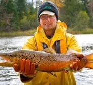 State fisheries biologists study the Michigan brown trout population.