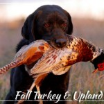 Fall Turkey and Upland Game