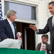"President Obama pardons a farm-raised turkey named ""Courage"" at the National Thanksgiving Turkey Presentation in 2009."