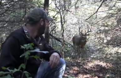 Chad Yousey keeps an eye on the buck he rescued as it watches him from a distance.