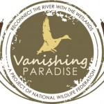 medium vanishing paradise logo