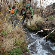 From left to right: Christine Clapp, ODFW Newport, Shannon Hurn, ODFW Hines, and Alan Mauer, USFWS Bend, use a backpack electrofisher to stun and capture trout on McDermitt Creek.