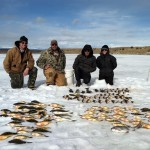Winter is a great time to fish for yellow perch in Utah.