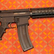 Plinker Arms' AR-15 .22LR rifle.