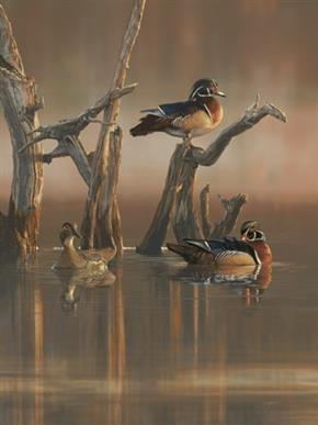 Wildlife artist Scot Storm, of Freeport, Minn., has been named as the Ducks Unlimited (DU) 2014 Artist of the Year. Storm's painting Tranquil Waters catapulted him into his second Artist of the Year title for DU.