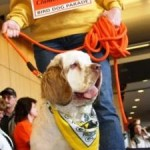 Bird Dog Parade Wags into Milwaukee's Wisconsin Center Feb. 14.