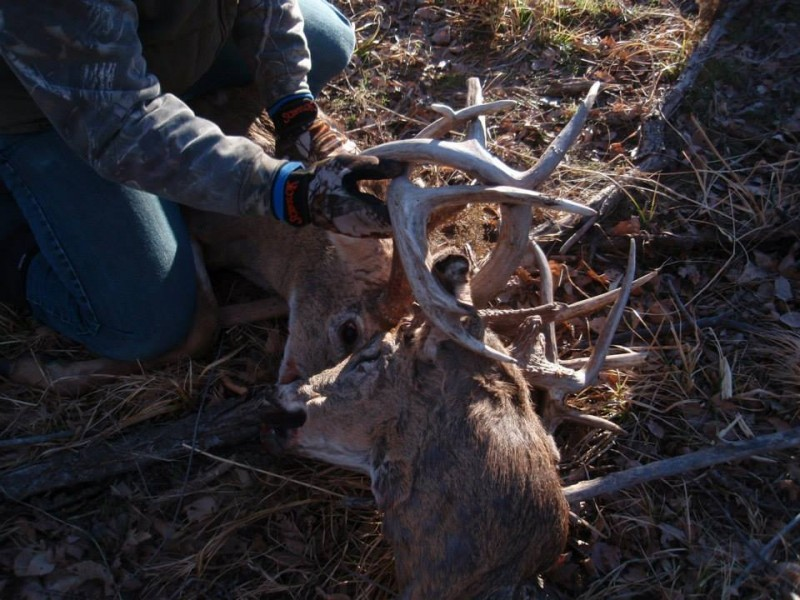 Kansas Buck Survives 2 Months With Severed Head Locked in its Antlers