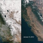 The effects of California's extreme drought are clearly visible from space. The image on the left was taken last year and snow can be seen across the Sierras. The image on the right was taken earlier this year, showing little snow coverage. Image courtesy NASA/NOAA.