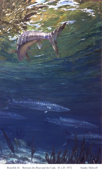 "BETWEEN THE BOAT AND THE CUDA by Stanley Meltzoff, 41""x25"", 1972."