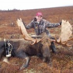 Alaska moose hunting is on many a hunter's bucket list. You need to take into account all of the logistics of the hunt and the return trip before you seriously consider it, though.