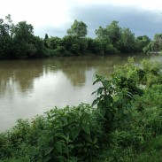 A coal ash spill in the Dan River earlier this month could mean bad news for local anglers.