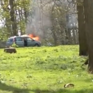 A Friday safari drive took a turn for the worse when one family's car caught on fire.