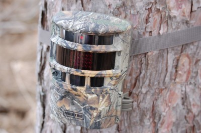 While the Moultrie Panoramic 150i isn't small, it blends in well and has proven to be a very cool camera.