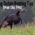 The Revolution Spring Turkey Hunting tips